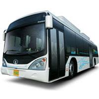 Buses, Trains, Public Transportation